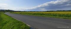 Landscape (A. Meli) Tags: road nature clouds landscape wolken r termszet tavasz tj tjkp t felhk strase repce diestrase landschafstbild