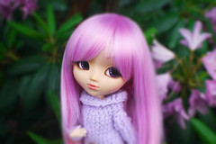 Dreams Come True ADAW 22/52 (Antique Wolf) Tags: camera flowers cute green eye classic love canon vintage denmark toy toys shoe rebel xt sweater big amazing eyes doll dolls purple you handmade n adorable s 2006 lips yarn glossy lilac wig week denim p pullip lovely elegant pullips phones beutiful soll torando denium 2016 speculate lashed obitsu vontage papin 25cm rewigged hapines specialness formydoll sblythe