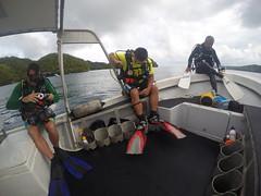 Ready, set, dive!