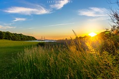 Sunset by the bridge (dannygreyton) Tags: ocean city bridge sunset sky grass copenhagen denmark sweden malmoe malm malmo resundsbron