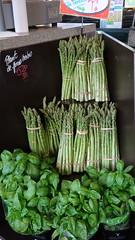 Green Goodness (susanvg) Tags: asparagus basil