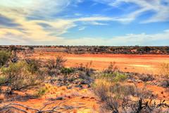 Central Australian Landscape (Hannah Nicholas Photography) Tags: sky outdoors desert outback australianlandscape southaustralia centralaustralia reddirt landscapephotography outbackaustralia redsoil aridzone aridlandscape hannahnicholas hannahnicholasphotography
