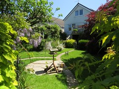 IMG_1635 (Andy panomaniacanonymous) Tags: 20160603 fff flowers garden ggg lawn lll grass house hhh home