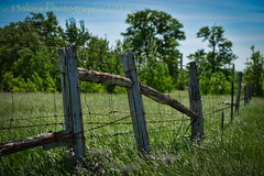 The Illusion of Security (HFF) (13skies) Tags: summer hot field fence drive wire truth looking sony country over things overthere countryroad false fenceposts wirefence hff gradd meanings happyfencefriday sonyalpha99 13skies