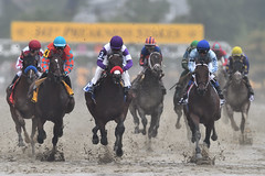 Preakness Stakes (SnyderPix) Tags: horses horse sports rain animal sport speed nikon mud action fast racing telephoto preakness horseracing f56 nikkor thoroughbred pimlico d5 sloppy slop 800mm supertelephoto nyquist nikond5 nikon800mm nikkor800mm exaggerator