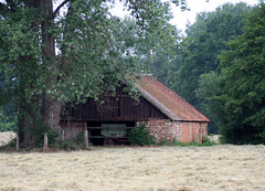 06-IMG_2526 (hemingwayfoto) Tags: ernte gras heu heuernte landwirtschaft natur scheune schuppen wiese