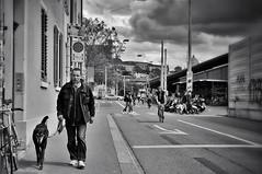 to walk the dog (Thomas8047) Tags: street city people urban bw dog streetart blancoynegro monochrome schweiz switzerland nikon flickr candid zurich streetphotography streetscene hund streetphoto zrich mainstation hb ch onthestreets passant zri 2016 streetphotographer stadtansichten fussgnger blackandwithe schwarzundweiss 175528 stadtzrich gassigehen streetpix towalkthedog d300s streetartstreetlife iamnikon snapseed thomas8047 strassencene zrigrafien zrichstreets hofmanntmecom