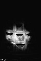 Well (El que retrata) Tags: pool well museum dark shadows rome italy murakami harukimurakami thewindupbirdchronicle philosophy psychology logic religion literature
