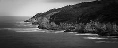 Coast (afsincelik) Tags: sea white seascape black tree clouds landscape rocks waves