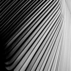 architecture (Anton C.) Tags: light blackandwhite bw white black berlin art 120 6x6 film monochrome wall architecture mediumformat germany square blackwhite pattern shadows kodak ishootfilm bronica architektur kodaktrix nikkor rodinal mitte selfdeveloped semistand adox filmisnotdead zenzabronica analoguephotography zenzabronicas2a artinbw standdevelopement adoxadonal adofix