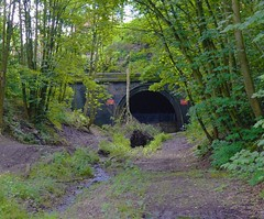 Crigglestone Tunnel from Cutting (davehell) Tags: crigglestone wakefieldrailway abandonedrailway disusedabandoned disusedtunnel horbury overgrown cutting