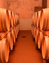 DSC_3927 (erinakirsch) Tags: italy castle landscape florence vineyard view wine vine winery vineyards views tuscany toscana grape grapevine florenceitaly frescobaldi winegrapes nipozzano