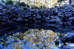 20160627-13-Disappearing Tarn (Roger T Wong) Tags: reflection water outdoors rocks walk australia hike scree tasmania hobart mtwellington bushwalk tramp 2016 wellingtonpark dolerite disappearingtarn sony2470 rogertwong sel2470z sonyfe2470mmf4zaosscarlzeissvariotessart sonya7ii sonyilce7m2 sonyalpha7ii