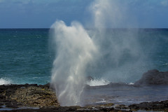 SpoutHorn1Jun16-16 (divindk) Tags: hawaii hawaiianislands kauai beach blowhole marine ocean sea spout spoutinghorn surf