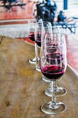 28082012-DSC_1718 (RonaldoMelo) Tags: chile santiago winter southamerica vinho taas tinto