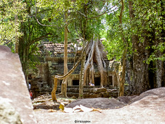 Kambodscha # 2005_05_01 # KonicaMinolta Dimage G600 - 2005 (irisisopen f/8light) Tags: color digital minolta konica farbe dimage g600 irisisopen