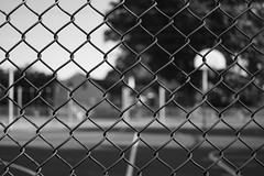 On The Other Side (TNMYcFan182) Tags: blackandwhite monochrome contrast bw fujifilm fujixpro1 fujifilmxseries xpro1 voigtlander vintage vintageglass leica fence