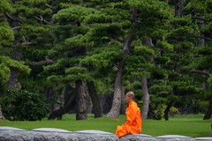 (only alice) Tags: park travel trees summer orange green japan tokyo monk   orangeandgreen