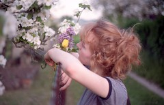 In Summer   On Fields I (Sail to England) Tags: flowers plants sunlight girl analog iso200 kodak super redhead iso 200 yashica kodacolor fx3