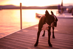 Twin Lakes (Zac Staffiere) Tags: sunset summer connecticut bearmountain twinlakes lakehouse