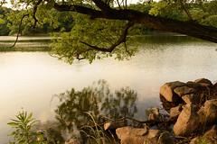 39Yamada Pond Park (anglo10) Tags: sunset japan