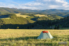 Dispersed Camping (kevin-palmer) Tags: bighornmountains wyoming july summer nikond750 tamron2470mmf28 bighornnationalforsest camping evening sunset blacktoothmountain green grass sunshine sunlight sunny tent campsite clouds trees forest snowcapped