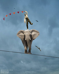 Out On A Wire - Digital Collage (Art De La Bliss) Tags: elephant art birds collage whimsy craft cloudysky digitalcollage wirewalking wirewalker outonawire artdelabliss