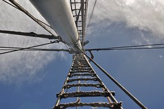 Ladder to Heaven (A2 Roolvink) Tags: sas digitalphotographyclass singaporeamericanschool