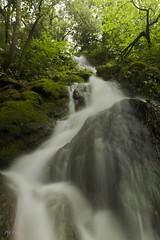 Salt de Martís (Pep Lopez) Tags: de waterfall salt pla cascada martis lestany