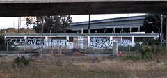(Runtrains) Tags: graffiti bay shot freeway area ovek lekt scez runtrains
