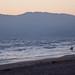 Lone Surver - Venice Beach, CA