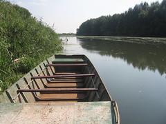 Begej 02 (Goran Necin) Tags: river serbia vojvodina srbija banat reka reke begej čamac zrenjanin ribolov trska gorannecin stajićevo
