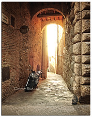 The cat and the bike. (pongo 2007) Tags: street light shadow bike cat tuscany motor walls montepulciano pongo2007