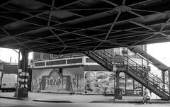 Bensonhurst ~  New Utrecht & 18th Ave., Brook