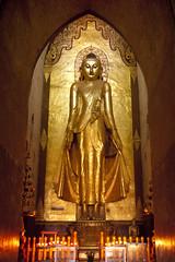MM083 Eastern Buddha - Ananda Temple - Bagan (VesperTokyo) Tags: temple gold golden burma myanmar ananda burmese 仏陀 仏教 gautama 仏像 ミャンマー pahto theravadabuddhism hinayana ブッダ myanmarese アーナンダ寺院 立像 小乗仏教 上座部仏教 lesservehicle 釈尊 standingstatueofbuddha jozabuddhism