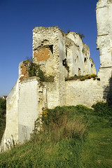 Picquigny, chteau, vestiges (Ytierny) Tags: france vertical architecture pierre ruine mur chteau muraille picardie grs edifice somme vestige reste picquigny vidames ytierny