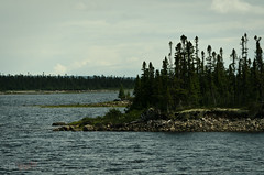 A lake (WhiteFlowersFade) Tags: voyage travel lake canada water forest landscape nikon eau labrador north lac roadtrip paysage nord forts d7k d7000