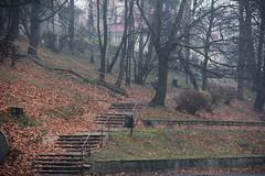 Small park , Jelenia Gra 13.11.2013 (szogun000) Tags: jeleniagra poland polska city buildings trees slope stairs sidewalks paths autumn fall urban dolnolskie dolnylsk lowersilesia canon canoneos550d canonefs18135mmf3556is