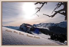 """"""" Happy New Year  -  Bonne Année ..."""" (jeanmical) Tags: france nature montagne landscape hiver neige soe happynewyear isère raquettes supershot bonneannée massifdelachartreuse aplusphoto theunforgettablepictures betterthangood goldstaraward saintpierredentremont artofimages lesvarvats legrandmanti1799m randonnéedunouvelan lancesdemalissard2045m dômedebellefont1975m"""