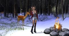 Winter Camping (Fly Etchegaray) Tags: grunge hipster lamb caeb flidaisetchegaray secondlifemodeling glamaffair