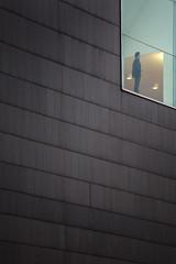 the observer (idlphoto) Tags: man architecture facade lonely minimalism minimalismo cristal fachada hombre pamplona observer observador irua baluarte canon24105f4lis idlphoto