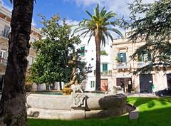 Brunnen / Fountain (schreibtnix) Tags: italien italy travelling fountain reisen brunnen palmtree altstadt oldtown palme martinafranca apulien olympuse5 schreibtnix