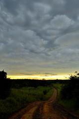 _DSC2720 (Papa Pic) Tags: arbol camino eldorado cielo tormenta nube misiones 9dejulio 2014 vallehermoso llluvia