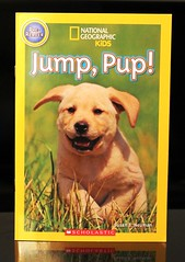 Jump, Pup! (Vernon Barford School Library) Tags: new school b dog pet pets dogs animal animals kids puppy reading book kid high jump puppies reader susan library libraries reads books super read paperback national cover junior covers bookcover pup pick middle society vernon quick recent geographic picks bookcovers nonfiction paperbacks neuman nationalgeographic readers readingmaterial barford softcover nationalgeographicsociety readingmaterials vernonbarford nationalgeographickids softcovers prereader superquickpicks superquickpick 9780545725934