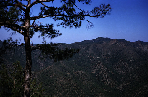 """194Zypern Troodos Kykkos • <a style=""""font-size:0.8em;"""" href=""""http://www.flickr.com/photos/69570948@N04/14105013686/"""" target=""""_blank"""">View on Flickr</a>"""