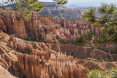 24082014usa_DSC9627 (veronesi.roberto) Tags: usa utah canyon bryce