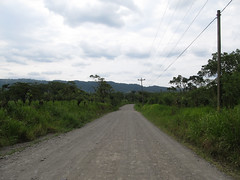 "Parc National Arenal: la route menant à l'arrêt de bus <a style=""margin-left:10px; font-size:0.8em;"" href=""http://www.flickr.com/photos/127723101@N04/26295362844/"" target=""_blank"">@flickr</a>"