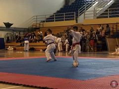 stefanou_15_5_2016_knockdown_262