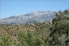 Mountain Backdrop (Mabacam) Tags: mountain mountains nature walking landscape outdoors countryside spain view hiking country andalucia trail moorish vista 2016 sayalonga canillasdealbaida