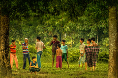 "The team of naughty boys"" (Curious ClickZ) Tags: trees cute green boys colors leaves childhood youth naughty sweet joy frame bunches bangladesh chittagong"